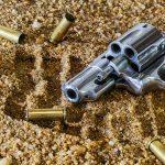 Firearm for Self-Defense