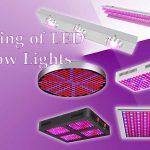 Working of LED Grow Lights