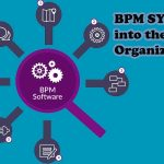 BPM systems into the organizations